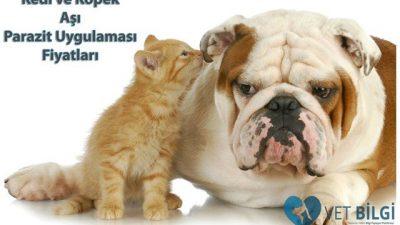 2017 Kedi-Köpek Aşı ve Parazit Uygulaması Fiyatları