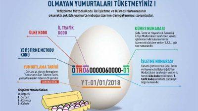 Yumurta Üzerindeki Kodlar ve YT