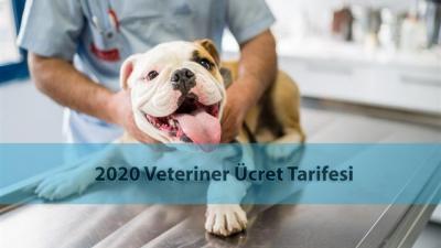 2020 Veteriner Hekim Ücret Tarifesi ve Veteriner Fiyatları